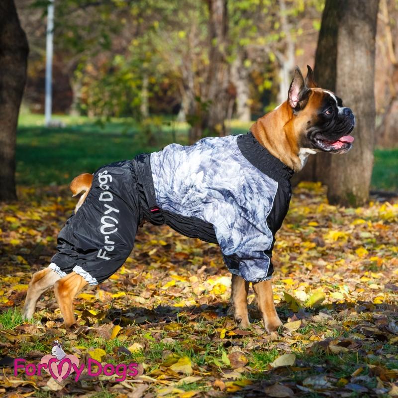 Одежда для собак - французский бульдог