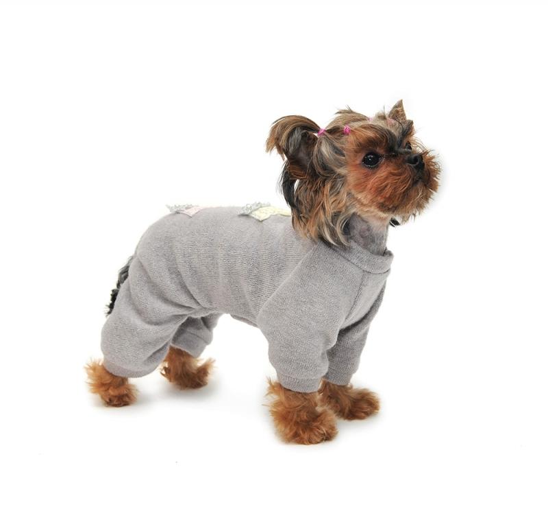 Вязаная одежда для маленьких собак