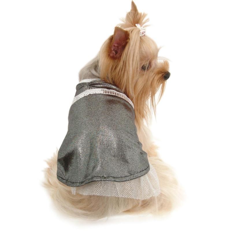 нарядные платья для собак